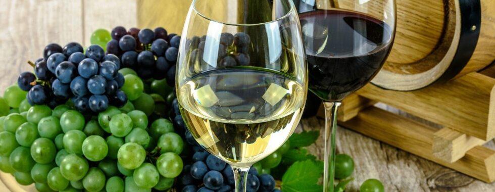 Calici vino - Luci nel Parco